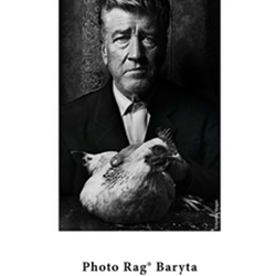 HAHNEMÜHLE FINE ART PHOTO RAG® BARYTA 315 GR. 610 MM. X 12 M.