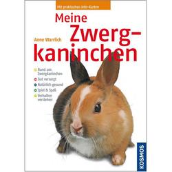 Meine Zwergkaninchen als Buch von Anne Warrlich