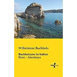 Buchholzens in Italien. Wilhelmine Buchholz  - Buch