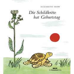 Die Schildkröte hat Geburtstag als Buch von Elizabeth Shaw