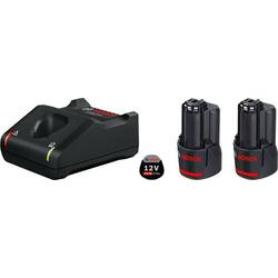 Bosch Professional 2 x GBA 12V 2.0Ah + GAL 12V-40 Professional 1600A019R8