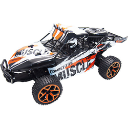 RC Sand Buggy Extreme D5