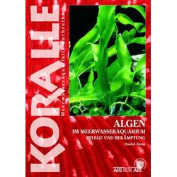 Algen im Meerwasseraquarium als Buch von Daniel Knop