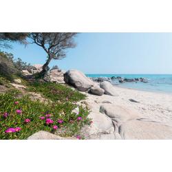 Komar Fototapete Mediterrane Träume, glatt, mehrfarbig, natürlich, bedruckt, (9 St)