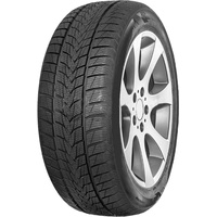 MINERVA Frostrack UHP 205/55 R16 94H