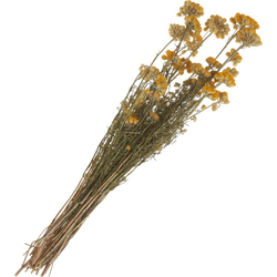 Kunstpflanze Lona, VBS, 30 cm - 50 cm