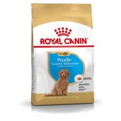 (7,96 EUR/kg) Royal Canin Breed Pudel Puppy 3 kg