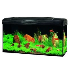 Marina Basic 96 Glasaquarium-Set, schwarz, Leuchtstoffröhre - 80x30x40 cm