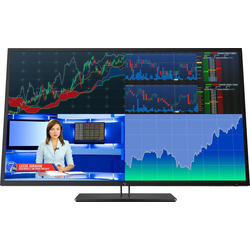 HP Z Display Z43 Monitor 107,97cm (42,5 Zoll)