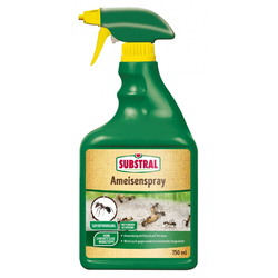 Substral Ameisenspray 750 ml