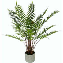 Kunstpflanze Waldfarn Waldfarn, I.GE.A., Höhe 80 cm, im Topf