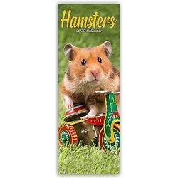 Hamsters 2020