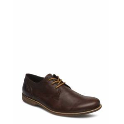 SNEAKY STEVE Fall Low Shoes Business Laced Shoes Braun SNEAKY STEVE Braun 42,45,43,46,44,41,40
