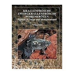 Krallenfrösche  Zwergkrallenfrösche  Wabenkröten. Kriton Kunz  - Buch