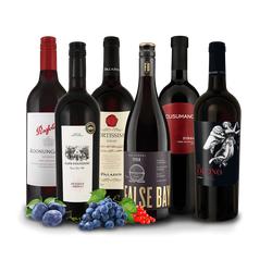 Shiraz/Syrah 'Entdecker' Wein-Probierpaket