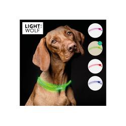 riijk Hunde-Halsband LED Hundehalsband
