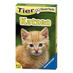 Tier Quartett: Katzen (Kartenspiel)
