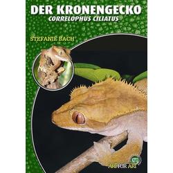 Der Kronengecko als Buch von Stefanie Bach
