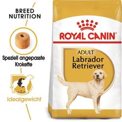 ROYAL CANIN Labrador Retriever Adult Hundefutter trocken 3 kg