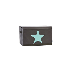 STORE IT! Aufbewahrungsbox Aufbewahrungsbox Star, grau/mint
