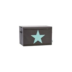 STORE IT! Aufbewahrungsbox Aufbewahrungsbox Star, grau/mint
