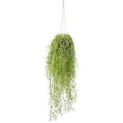Kunstpflanze Mooshänger, I.GE.A., Höhe 70 cm, Mit Hängeampel