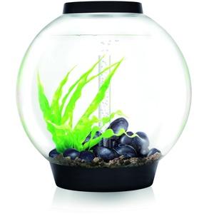 Oase biOrb CLASSIC 60 LED Kugel-Aquarium, 60 Liter - Aquarien Komplett-Set mit LED Beleuchtung und patentiertem Filter-System, Acryl-Becken