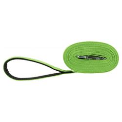 Trixie Schleppleine Gurtband grün, Maße: 15 m / 20 mm