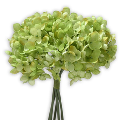 Kunstblume Hortensien Kunstblumen 5 Stk im Bund 25 cm grün Hortensien, matches21 HOME & HOBBY, Höhe 25 cm, Indoor grün