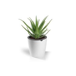 LAZY-LEAF-Blumentopf, selbstgießend, ca. 1,1 l
