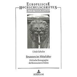 Brunnen im Mittelalter. Ulrich Schulze  - Buch