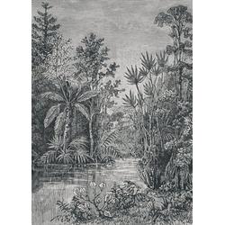 Art for the home Fototapete Jungle, 200 cm Länge