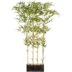 Künstliche Zimmerpflanze Bambusraumteiler Bambus, Creativ green, Höhe 130 cm, im Holzkasten