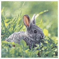 Linoows Papierserviette 20 Servietten Kaninchen, putziger Geselle auf der, Motiv Kaninchen, putziger Geselle auf der Osterwiese