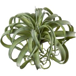 Kunstpflanze Tillandsie, Creativ green, Höhe 35 cm