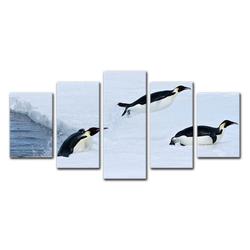 Bilderdepot24 Leinwandbild, Leinwandbild - Pinguin II 100 cm x 50 cm