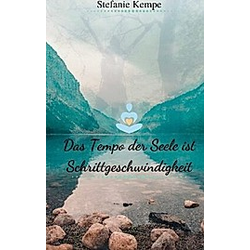 Das Tempo der Seele ist Schrittgeschwindigkeit. Stefanie Kempe  - Buch