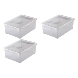 Rotho Aufbewahrungsbox Rotho 3-er Set Clear Box Man Shoe 10 l, Aufbewahru (3 Stück)