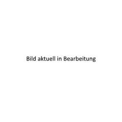 Hensel Kabelabzweigkasten mit Funktionserhalt, 16-50 qmm, 5polig, Stahlblech FK 6505 - 60001071 - 1 Stück