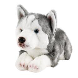 Teddys Rothenburg Kuscheltier (Hund Husky liegend 30 cm, Plüschtier, Stofftier, Huskys, Plüschhund, Stoffhunde)