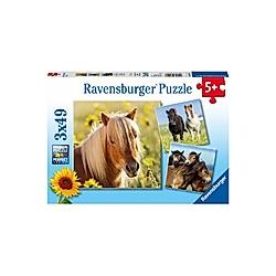 Liebe Pferde (Kinderpuzzle)