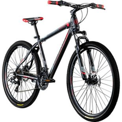 Galano Toxic 29 Zoll Mountainbike Hardtail MTB Fahrrad Scheibenbremsen Shimano Tourney... schwarz/rot