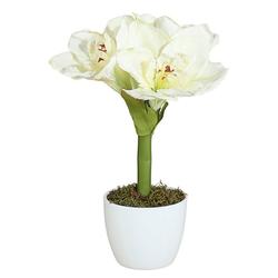 Kunstpflanze Amaryllis, Creativ green, Höhe 35 cm