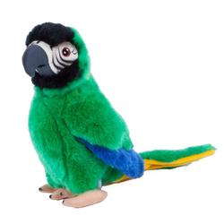 Teddys Rothenburg Kuscheltier Papagei grün 26 cm (Stoffpapagei Plüschpapagei, Papageien Plüschtiere Stofftiere Spielzeug)