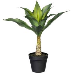 Künstliche Zimmerpflanze Agave mit Stamm Agave, Creativ green, Höhe 45 cm
