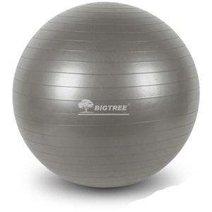 BIGTREE Gymnastikball Gymnastikball für Fitness, Ø 55cm, 65cm und 75 cm grau Ø 65 cm