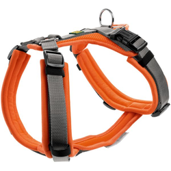 Geschirr Maldon orange/grau XS-S