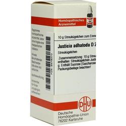 JUSTICIA ADHATODA D 2