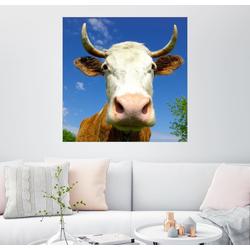 Posterlounge Wandbild, Achtung, Hörner! 60 cm x 60 cm