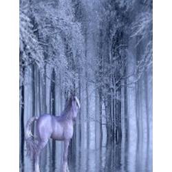 Unicorn Fantasy Notebook als Buch von Rwg